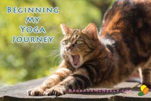 Beginning My Yoga Journey