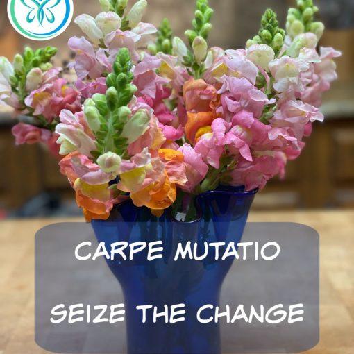 Carpe Mutatio - Seize the Change