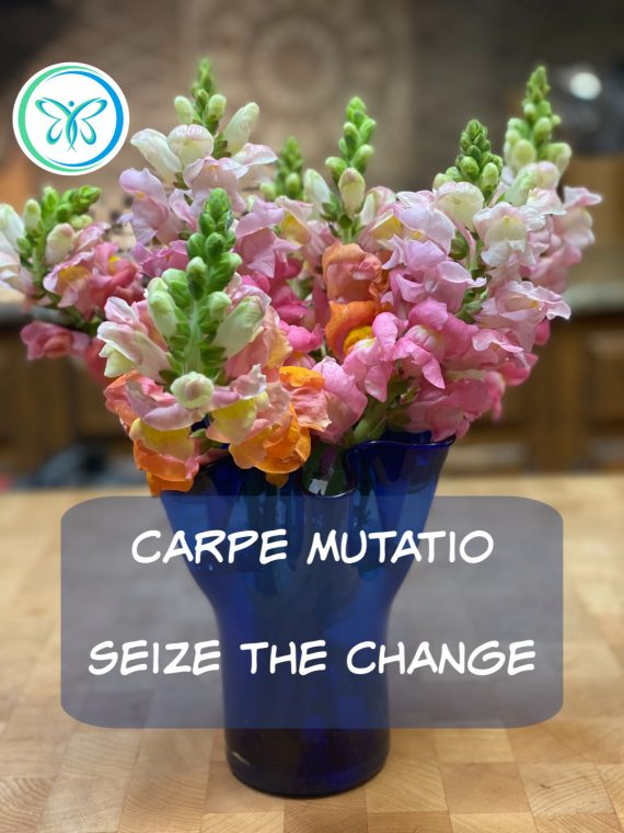 Carpe Mutatio - Seize the Change