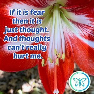 fear is just a thought