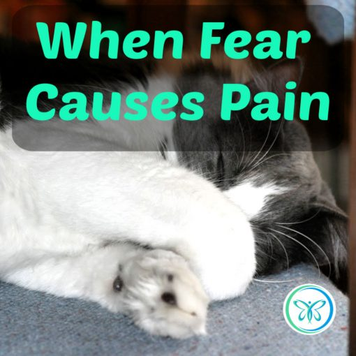 When Fear Causes Pain